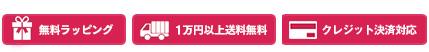 無料ラッピング 1万円以上送料無料 各種クレジットカード利用可能